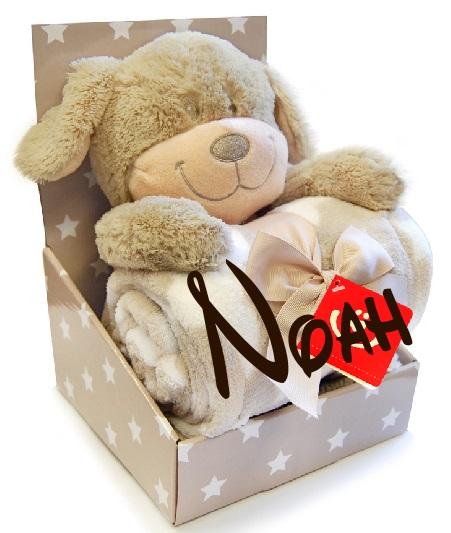 geschenkset babydecke mit namen pl schtier teddyb r geburt taufe geschenk ebay. Black Bedroom Furniture Sets. Home Design Ideas